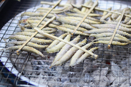 spiny: spiny eel,Macrognathus siamenis grilled on roaster