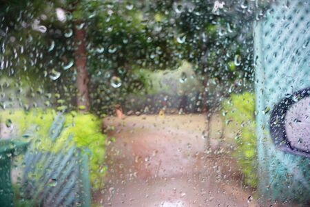 soft rain drops on glass behind that green trees way to park