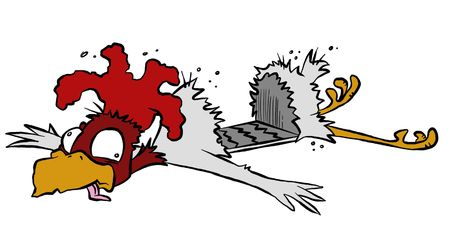 guess: So why DID that chicken cross the road anyway? After being run over by a car, I guess we may never know. Stock Photo