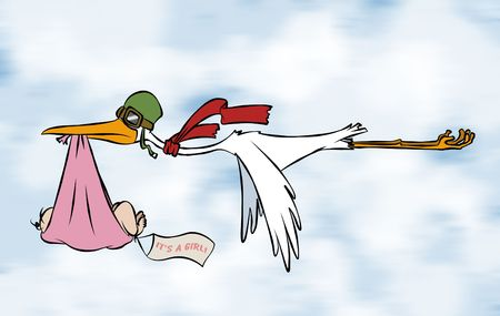 A stork delivering a special delivery to an unknown destination. But we do know its a girl.