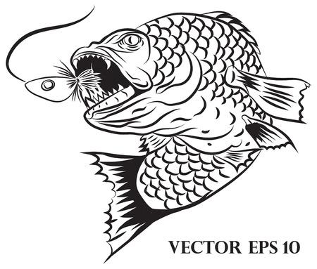 white salmon river: fisherman design Illustration