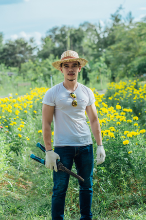 Man with scissors cutting grass in marigold garden,gardening concept. Stock Photo