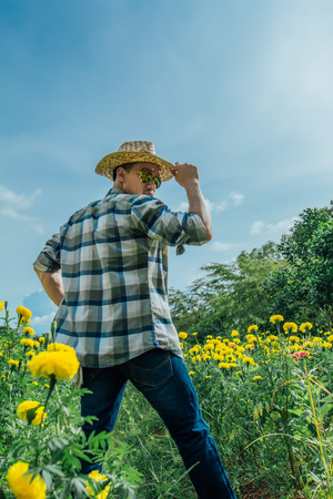 Asian men with marigold fields, Photos in very light,gardening concept. Stock Photo