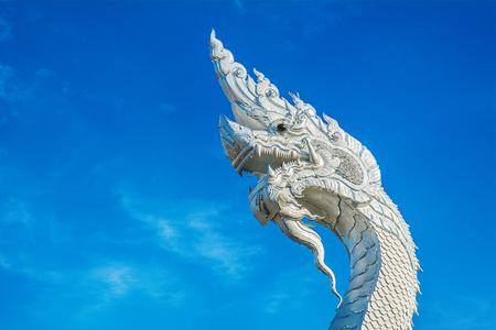 White king of nagas live in keang ka bao,Mukdahan Thailand.