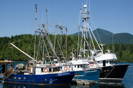 Fishing Boats, Ucluelet, Vancouver Island UCLUELET, BRITISH COLUMBIA, CANADA, AUGUST 18, 2015: Three commercial fishing boats ready for departure, sits at anchor in Ucluelet harbor, on the west coast of Vancouver Island, on August 18, 2015.