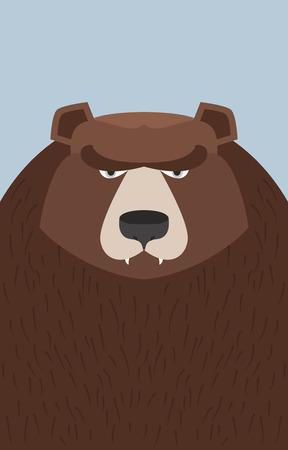 wild bears: big brown bear. Vector illustration