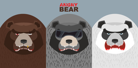kodiak: Establecer malos osos. Animales enojados salvajes. Villanos. Ilustraci�n vectorial Vectores