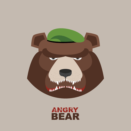 green beret: Bear soldier in a green beret. Angry animal