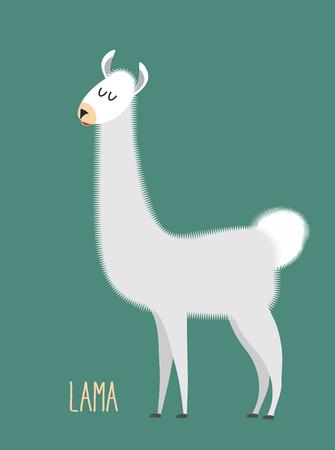 Llama Alpaca. Animal Lama on a green background. Vector illustration