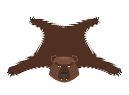zoo dry: Bear pelt. Big brown bear Grizzly hide. Hunting trophy. Vector illustration Illustration