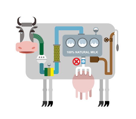 Cow and milk. Infographics getting natural milk. Stages of production of milk from cow. Pet inner peace. Animal feed system: from grass to milk. Vector illustration.
