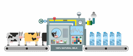 chain food: Infographics  milk production. Stages of milk production from cows. Conveyor belt with cows. Natural product. Vector illustration. System production of dairy products. Apparatus for lifting milk