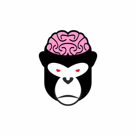 cranial: Monkey brains. Vector illustration  head animal. Pink brain and black monkey. Open cranial box.