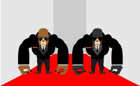 guardia de seguridad: Guardias de seguridad de un gorila. Grandes Primates guardaespaldas en trajes. Ilustraci�n del vector del mono Vectores