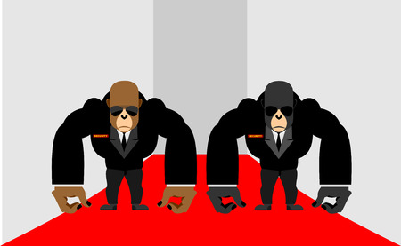 life guard stand: Security Guards of a gorilla. Big Bodyguards Primates in costumes. Vector illustration  monkey