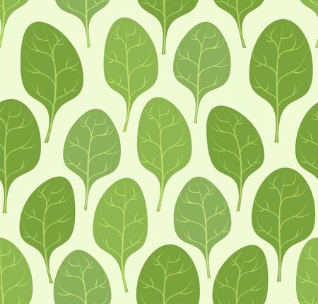 spinach: Spinach leaves seamless pattern. Vector background Veggie plants green. Illustration