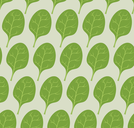 spinach: Spinach background. Vector seamless pattern from green leaves of useful plants.