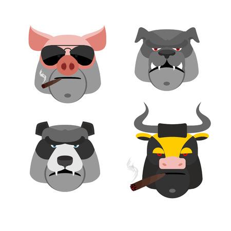 british bulldog: Set of angry animals. Head of a Pig and bull. Bad Bear and Bulldog. Vector illustration