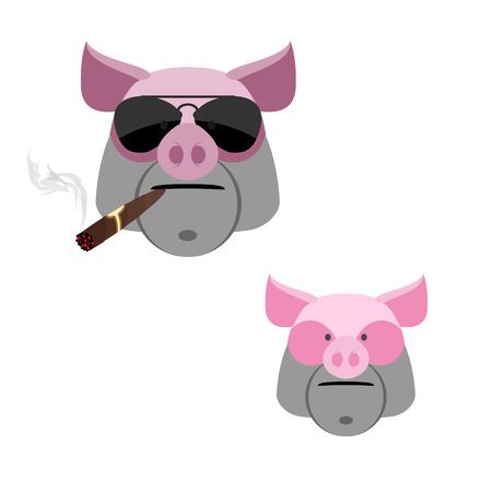 vintage cigar: Pig with a cigar. Scary and angry Boars head on a white background. Illustration