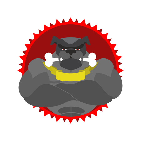 angry dog: Angry dog Round emblem. Large Bulldog bodybuilder with bone. Vector logo pet with big muscles. Logo for the Sports Club.