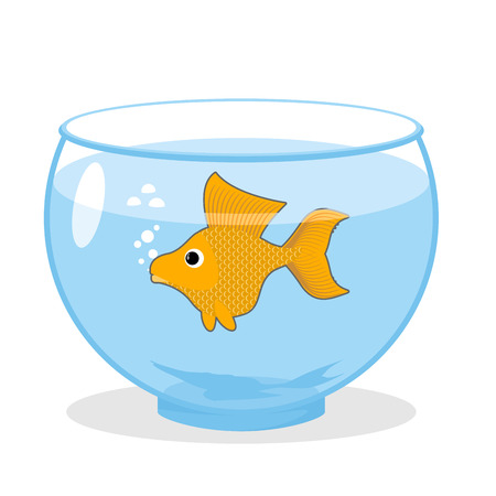 fulfillment: Goldfish in an aquarium. Symbol of fulfillment of all desires. Magic yellow fish.