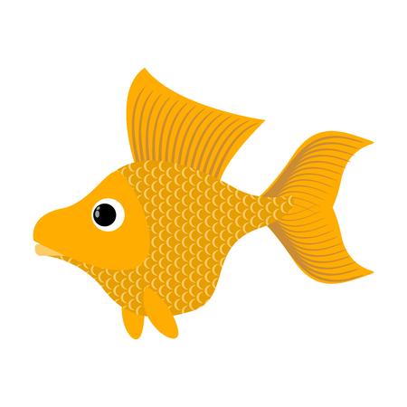 ichthyology: Goldfish on white background. Fabulous fish fulfills desires. Yellow Sea animal