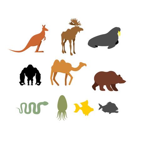 kangaroo white: Set of wild animals on  white background. Silhouettes of Animals and fish. Kangaroo and moose. Seal and Black Gorilla. Camel and brown bear. Snake and Piranha