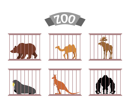 Zoo. Collection of wild animals in cages. Beasts behind bars. Bear and moose in captivity. Kangaroo and camel sit at Zoo. Seal, walrus and Gorilla under control of   person. Animal care. Illustration