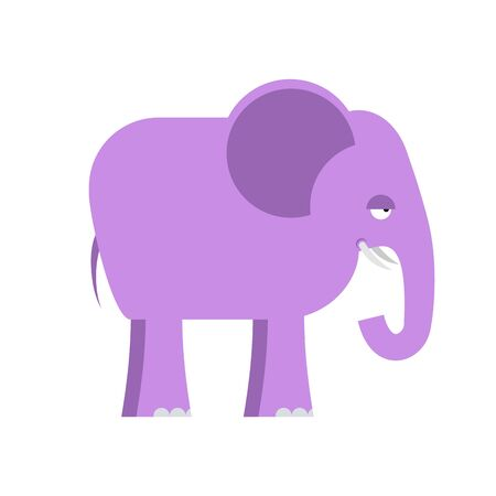 mammal: Purple elephant. Big cute animal. Animal from  jungle. Wild beast. Mammal with large trunk from Africa. Illustration