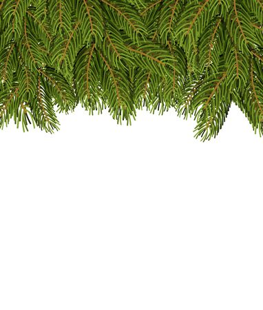 FIR branches on white sheet. Christmas background for congratulations. Tree tree and place for your text. Illustration