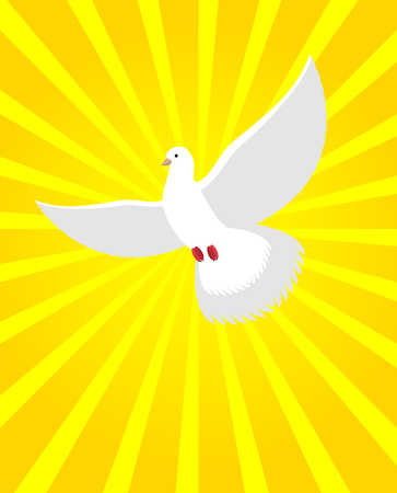 radiance: White Dove in sunny radiance. Divine light and white bird. White flying Dove is symbol of human soul Illustration