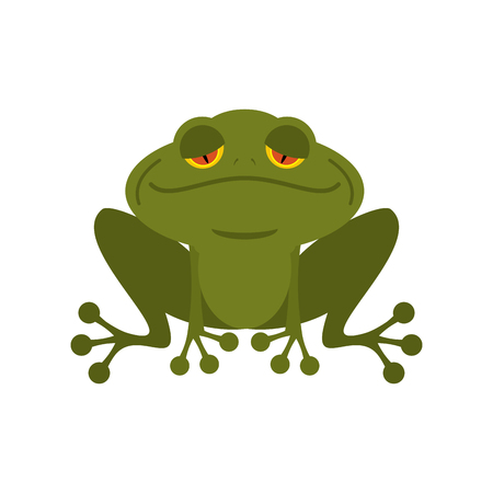 marsh: Frog. Green melancholy Toad. Cute freshwater with sad eyes. Marsh animal.