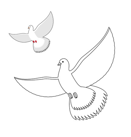White Dove coloring book. Flying white pigeon. Contour bird waving wings. Childrens coloring book with bird. Illustration