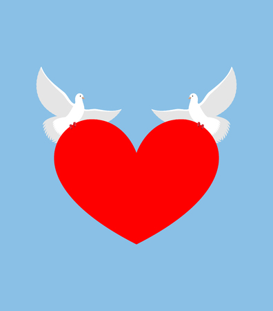 lovebirds: White Dove holds heart. Two white bird is symbol of purity. Red heart symbol of love. Two lovebirds bear love. Element for Valentines day.
