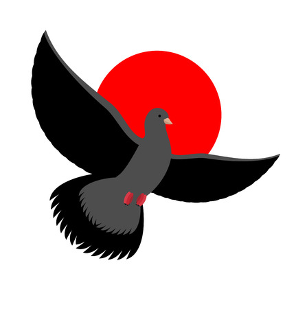 wingspan: Black Dove symbol of sadness and mourning. Flying black Bird on red sunset. Wingspan is pigeon