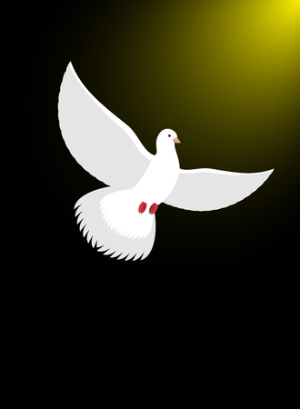 high spirits: White dove flies in dark on divine light. Magical glow and white bird. Christian symbol illustration of Ascension of soul