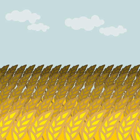 grain field: Field of wheat. Grain field and blue sky. Rye Spikes Illustration
