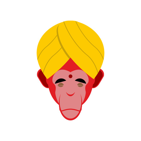 yogi: Monkey in turban. Monkey yoga. Head of red monkeys. Monkey Indian yogi.