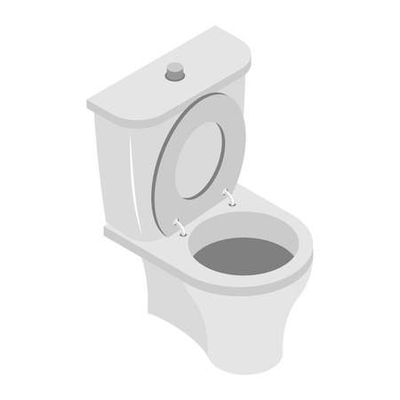 empty the bowel: Toilet bowl on white background. WS accessories isolated