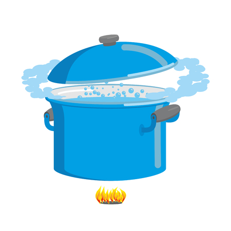 boiling pot: Boiling pot of water. Cookware for cooking