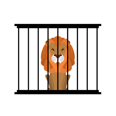 behind bars: Lion in zoo cage. Strong Scary wild animals in captivity. Big hairy predator behind bars Illustration
