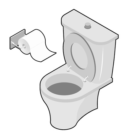 toilet roll: Toilet and roll of toilet paper Isometrics. Washroom Accessories. Toilet facilities