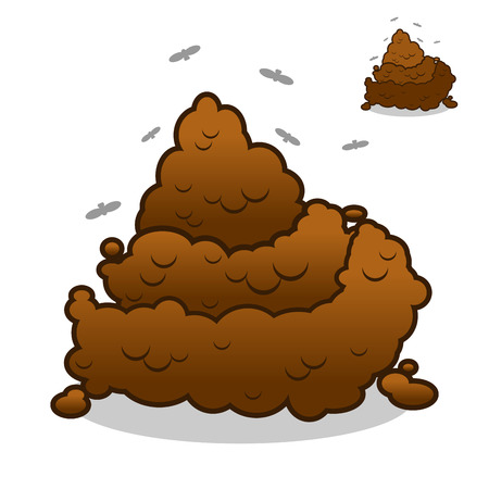 Poop. Pile of Crap on white background. Turd isolated. Brown excrement. Smelly dog feces.