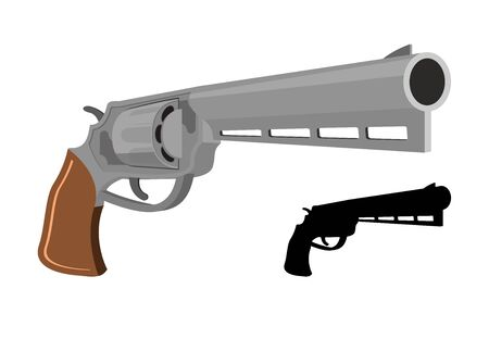 gun control: Gun