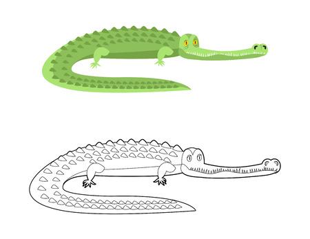 caiman: Crocodile Coloring book. Good caiman. Wild animal. Green reptile with large teeth. Alligator in linear style. Big water reptiles. Huge African predator. Tropical beast Illustration