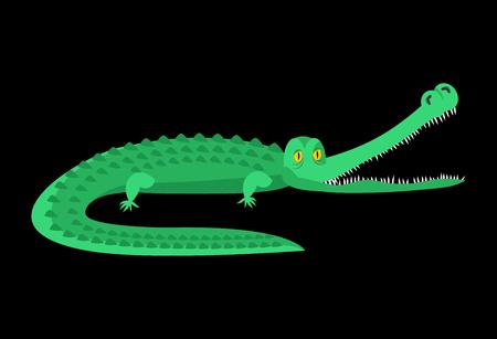 reptiles: Crocodile isolated. Good caiman. Wild animal. Green reptile with big teeth. Alligator isolated. Large water reptiles. Huge African predator. tropical beast