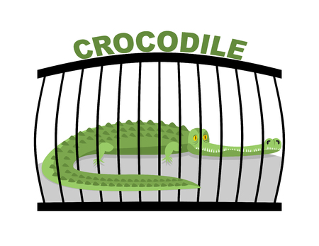 captivity: Crocodile in zoo. Large alligator in cage. Green aggressive predator in captivity Illustration