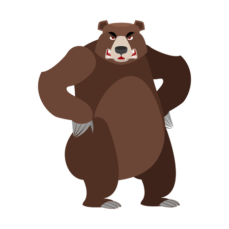 Angry bear on its hind legs. Aggressive Grizzly on white background. Wild evil animal. Large ferocious predator. Forest  brutal strong beast
