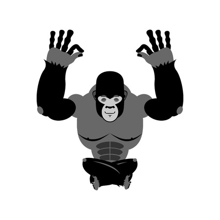 nirvana: Gorilla meditating. Wild animals on white background. Status of nirvana and enlightenment. Lotus Pose. Beast yoga