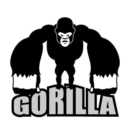 irritated: Angry gorilla. Aggressive big monkey. irritated wild animal.
